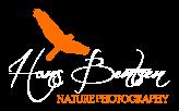 Wildlife Photography Australia